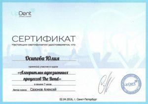 Сертификат №17
